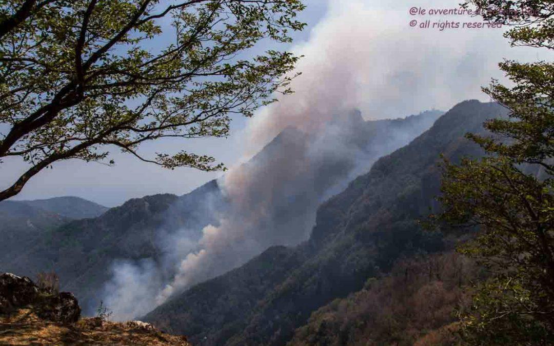 La Terra degli Incendi e il silenzio dei responsabili