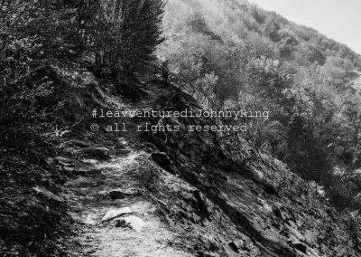 Monte Faito, sentiero per la Conocchia, 2017